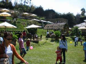 Pemkab Bandung Kesulitan Membuka Ruang Terbuka Hijau Bandung Geulis